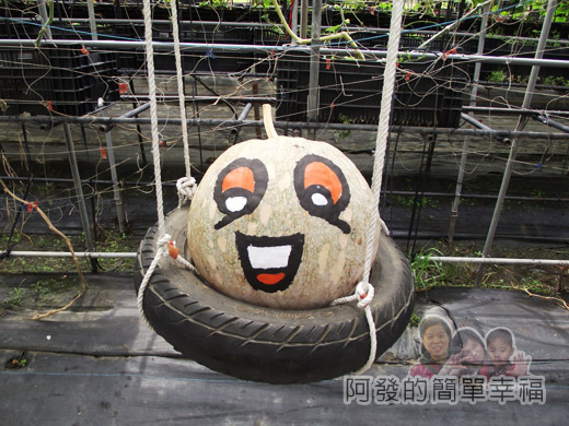 南瓜王國(旺山休閒農場)24南瓜隧道II