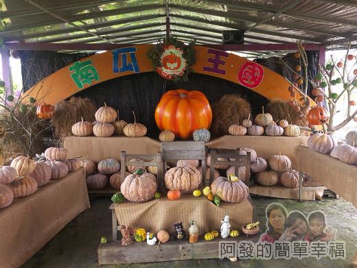 南瓜王國(旺山休閒農場)34南瓜展示區