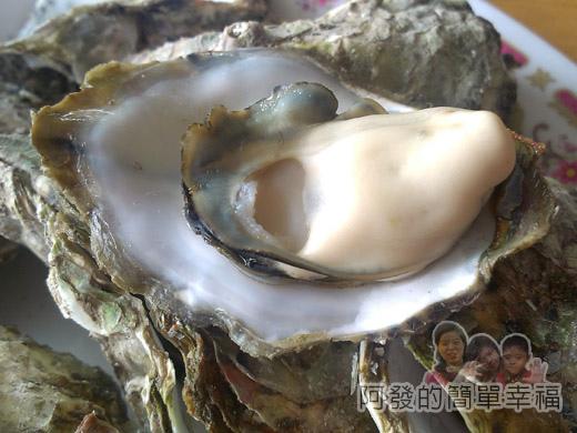 壯圍-嘉澎碳烤23澎湖牡蠣