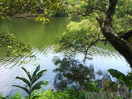 宜蘭礁溪-龍潭湖25湖畔一景