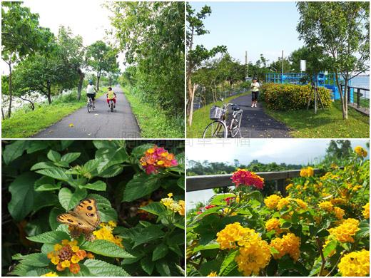 冬山河自行車專用道14花花草草