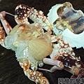 咖哩螃蟹03-處理螃蟹2