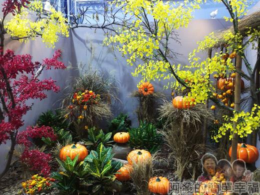 臺北花卉裝置藝術設計大展19-出發!跟著花去旅行-機艙窗外-秋