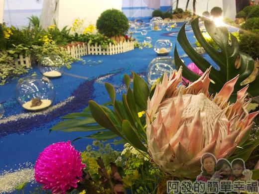 臺北花卉裝置藝術設計大展24-珍奇大陸-漂流河上