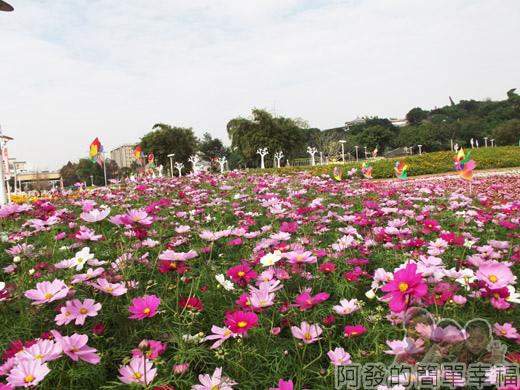 2014臺北花卉展26-圓山園區-紫色花海