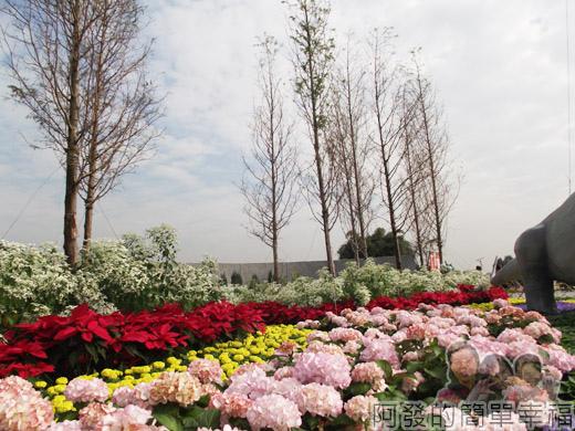 2014臺北花卉展09-圓山園區2區-穿越侏儸紀4-水杉