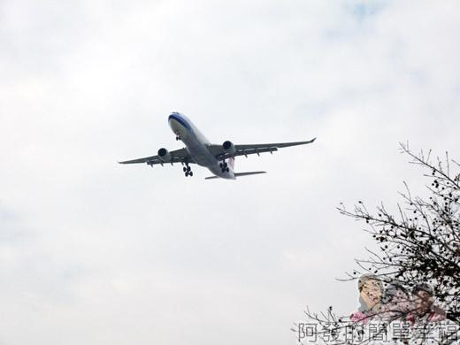 2014臺北花卉展12-圓山園區-上方準備降落的飛機