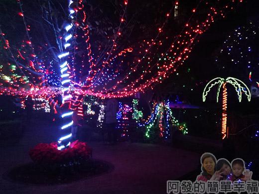 福興里聖誕公園06-公園中心的燈海