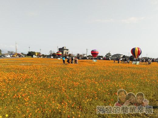 2015花海氣球嘉年華05