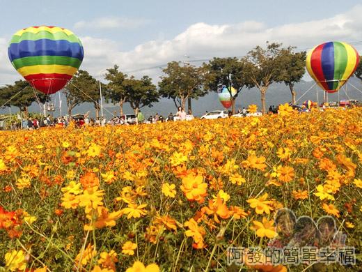 2015花海氣球嘉年華09