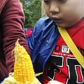 宜蘭大同清水地熱33-第一次剝玉米的兒子眼神專注.jpg