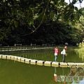 長埤湖風景區18-生態水池