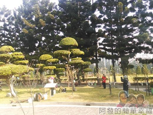中正紀念堂梅景03-雲漢池旁-果梅區