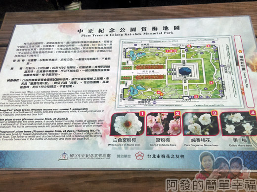 中正紀念堂梅景04-賞梅地圖