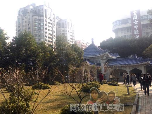 中正紀念堂梅景24-杭州南路與信義路出口-純香梅花區