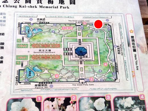 中正紀念堂梅景25-杭州南路與信義路出口-純香梅花區