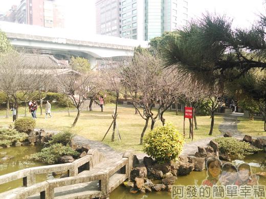 逸仙公園18-梅景已至尾聲,但依舊美麗