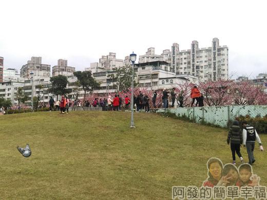 樂活公園賞寒櫻03-往公園的人們
