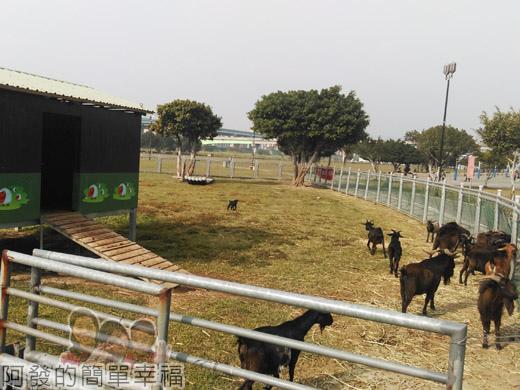 大臺北都會公園II06-疏洪親水公園-羊咩咩的家.jpg