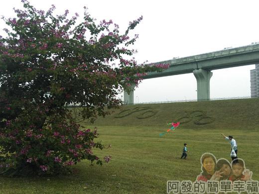 大臺北都會公園II17-幸福水漾公園-草皮上放風箏.jpg