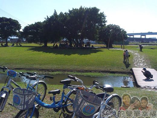 大臺北都會公園II30-幸福水漾公園-愛戀鐘森與一旁大樹.jpg