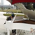 大臺北都會公園II40-幸福水漾公園-中央表演廣場鋼琴.jpg