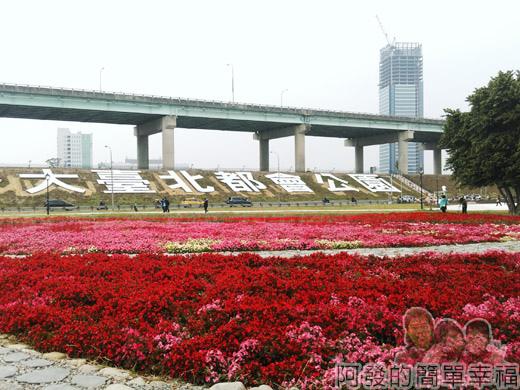 大臺北都會公園II48-幸福水漾公園-四季花海區.jpg