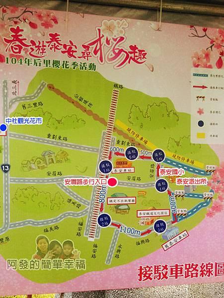 春遊泰安尋櫻趣03-地圖導覽