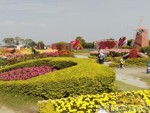 中社觀光花市24-百合花區