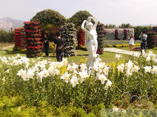 中社觀光花市31-白百合與雕像