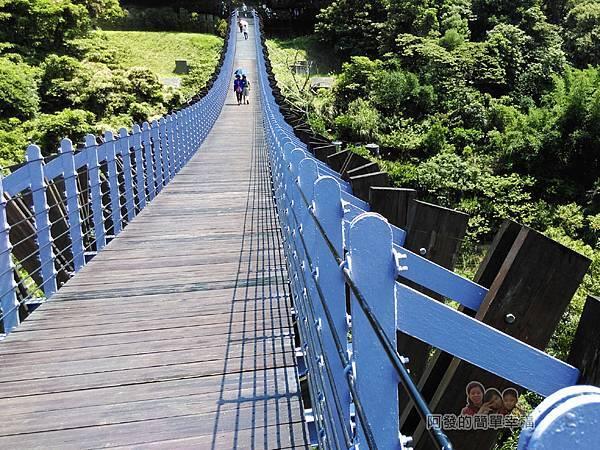 白石湖07-白石湖吊橋兩側造型如龍骨