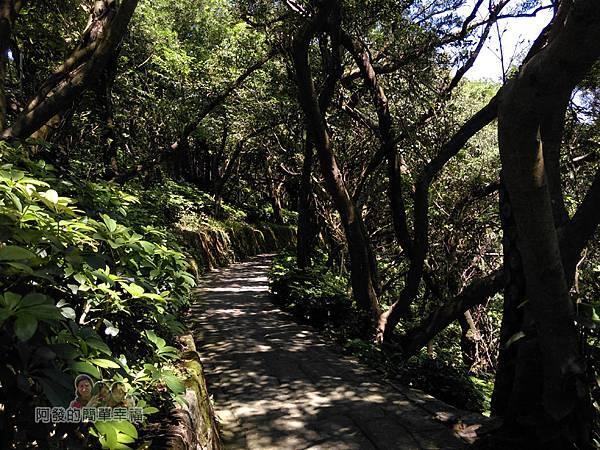 內湖-碧山巖07-親山步道