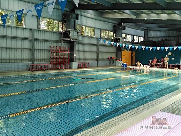前港游泳池03-室內泳池(溫水)