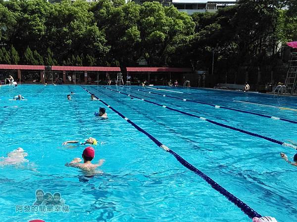 前港游泳池14-室外泳池一半為練習區