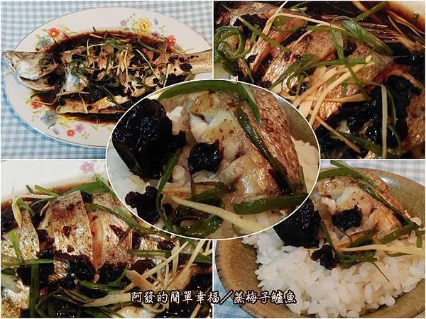 家常菜11-蒸梅子鱸魚