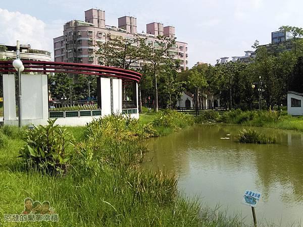 溪北公園扇貝殼溜滑梯05-生態池