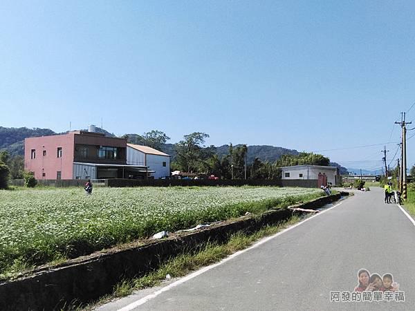 中新里韭菜生長專業區03-道路也是龍潭至鶯歌自行車道