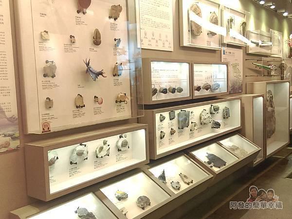 台灣博物館土銀館12-生命的起源區