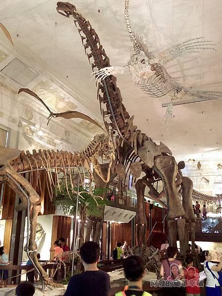 台灣博物館土銀館16-展區中央為大型恐龍骨骼模型