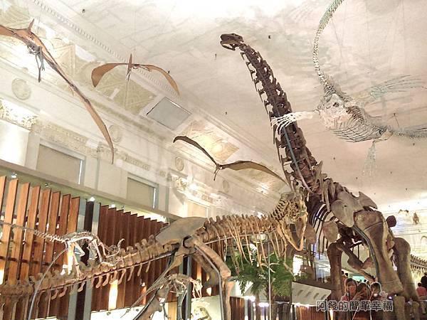 台灣博物館土銀館17-大型恐龍骨骼模型
