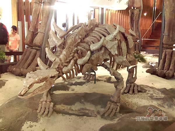 台灣博物館土銀館18-大型恐龍骨骼模型II