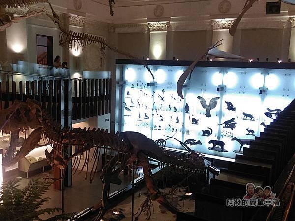 台灣博物館土銀館26-展區內一景