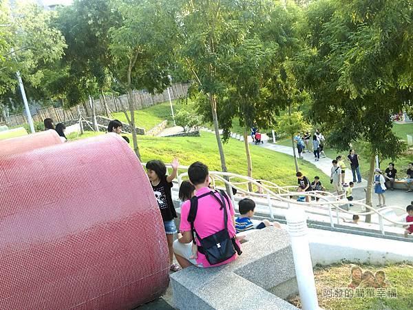 河川教育中心園區22-彩色大水管溜滑梯-上方一景