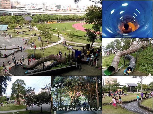 錦和運動公園all