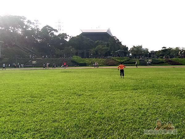 錦和運動公園01-為大面積綠色草坪的運動公園