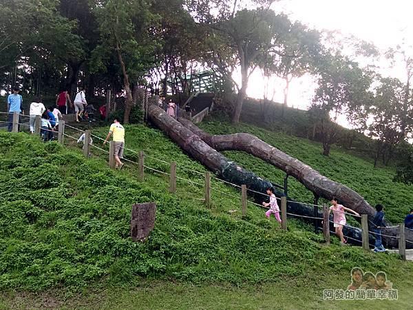 錦和運動公園08-神秘通道(樹洞隧道溜滑梯)