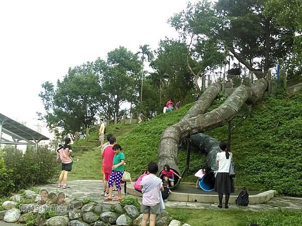 錦和運動公園09-溜滑梯的外觀有如大樹根般