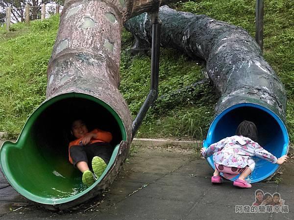錦和運動公園16-看兒子溜下來多樂