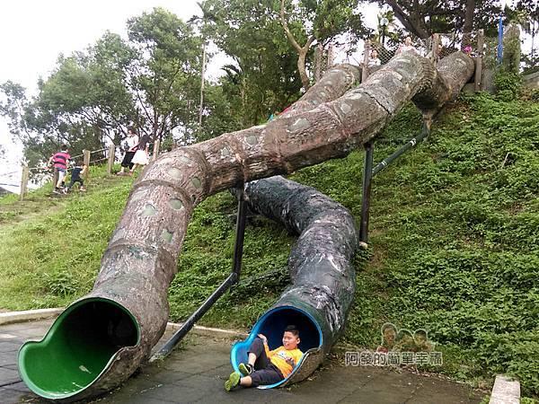 錦和運動公園18-又溜下囉