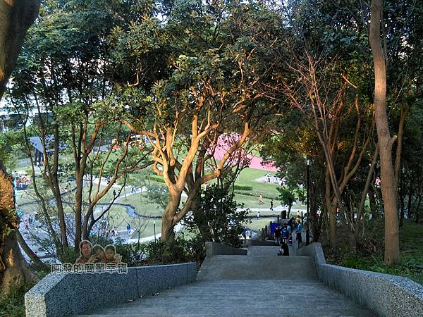 錦和運動公園26-登丘步道階梯兩旁綠樹成蔭